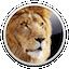 Apple Mac OS X Lion 10.7.5 Supplemental Update for Mac